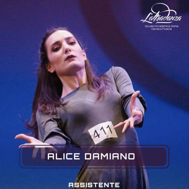 ALICE DAMIANO